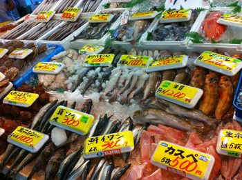 魚.jpg